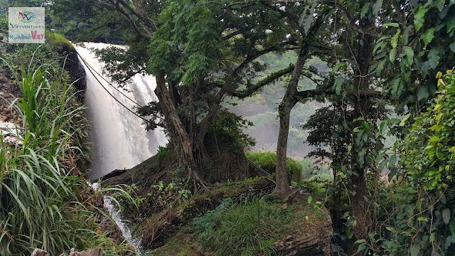 Tham quan Thác Voi ở Đà Lạt mùa nước đổ