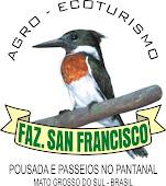 Pantanal Sul | Fazenda San Francisco