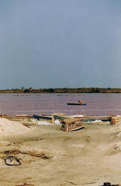 Lago Rosa en Senegal (2003)