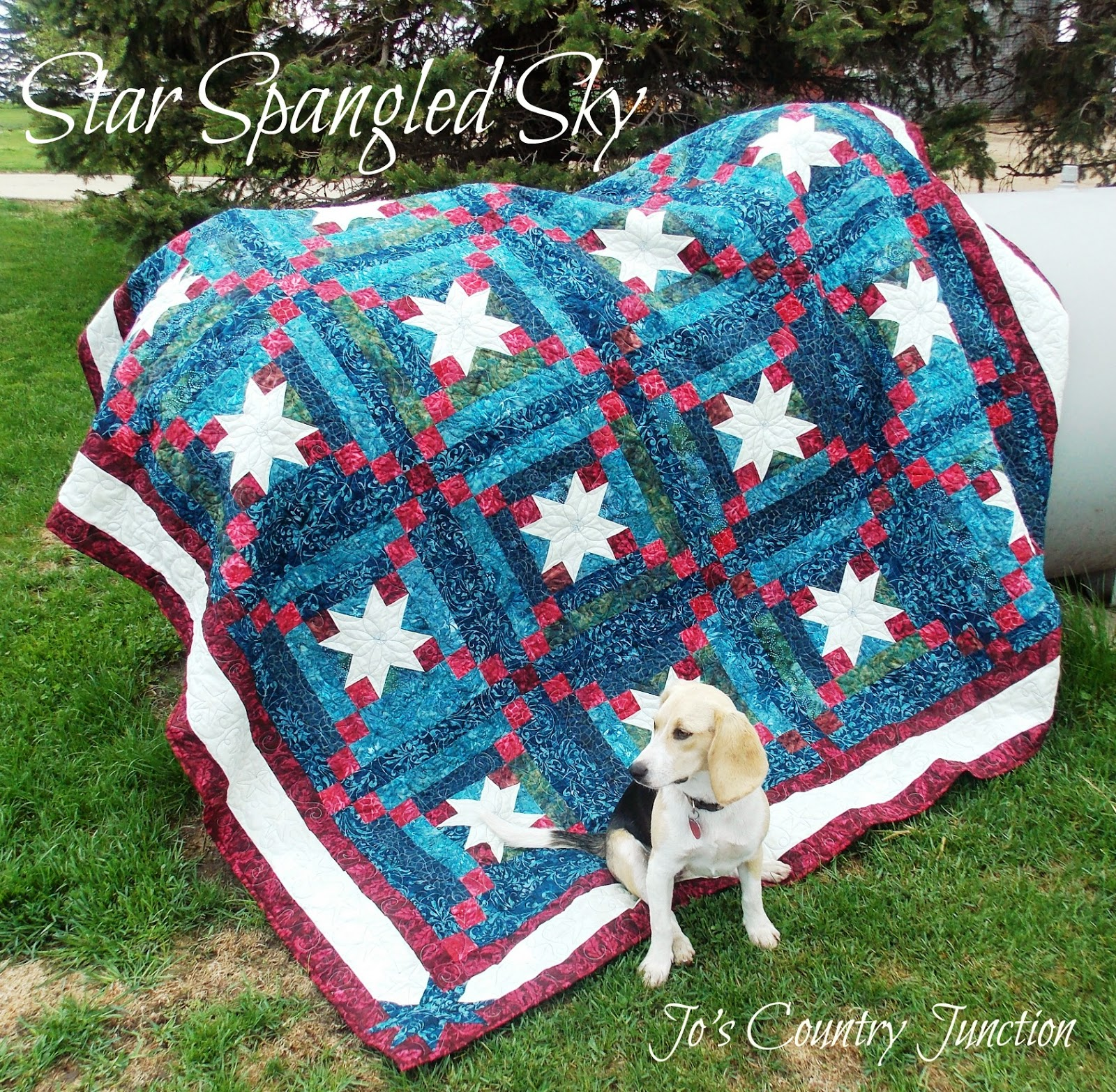 Free pattern day patriotic and flag quilts quilt inspiration show your colors free pattern with prairie points by susan k cleveland at pieces be with you the link to the free pattern is on the left sidebar bankloansurffo Image collections