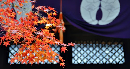 京都 光明寺