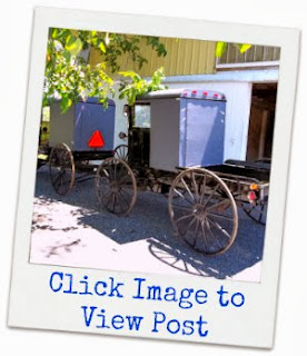 "Click Image:To View My Visit With Amish Buggy Maker ""AARON LAPP"""