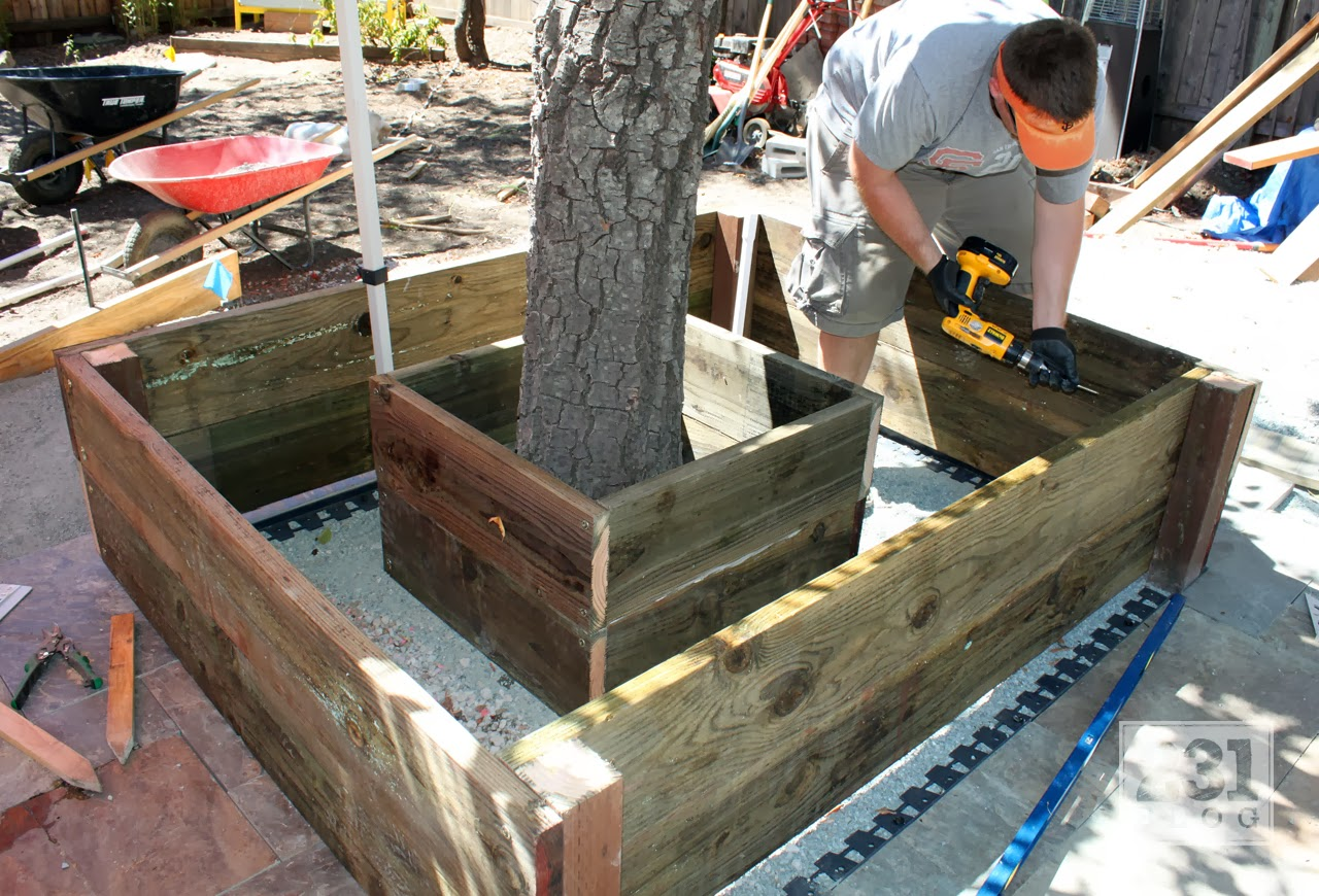 PLANTER BOX WITH SEATING AROUND THE ALDER TREE PART 2: BUILDING AND ...