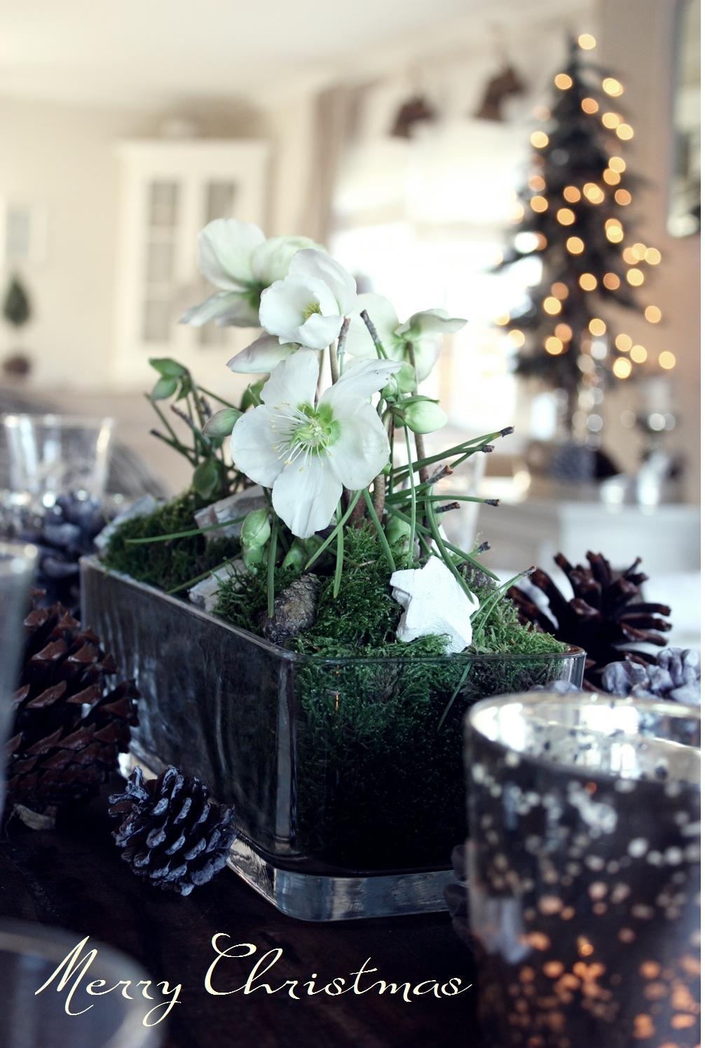 white living frohe weihnachten. Black Bedroom Furniture Sets. Home Design Ideas