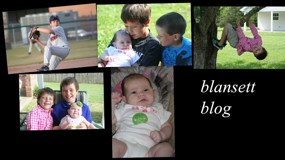 Blansett Blog
