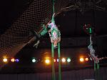 В Харьковском цирке_Kharkiv circus