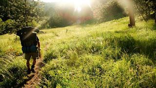 δάσος περπάτημα πεζοπορία