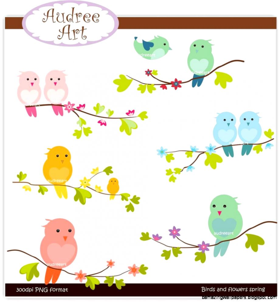 Spring Birds Clip Art   My Picture Gallery