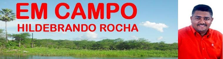 EM CAMPO