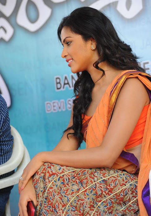 amala paul new saree cute stills