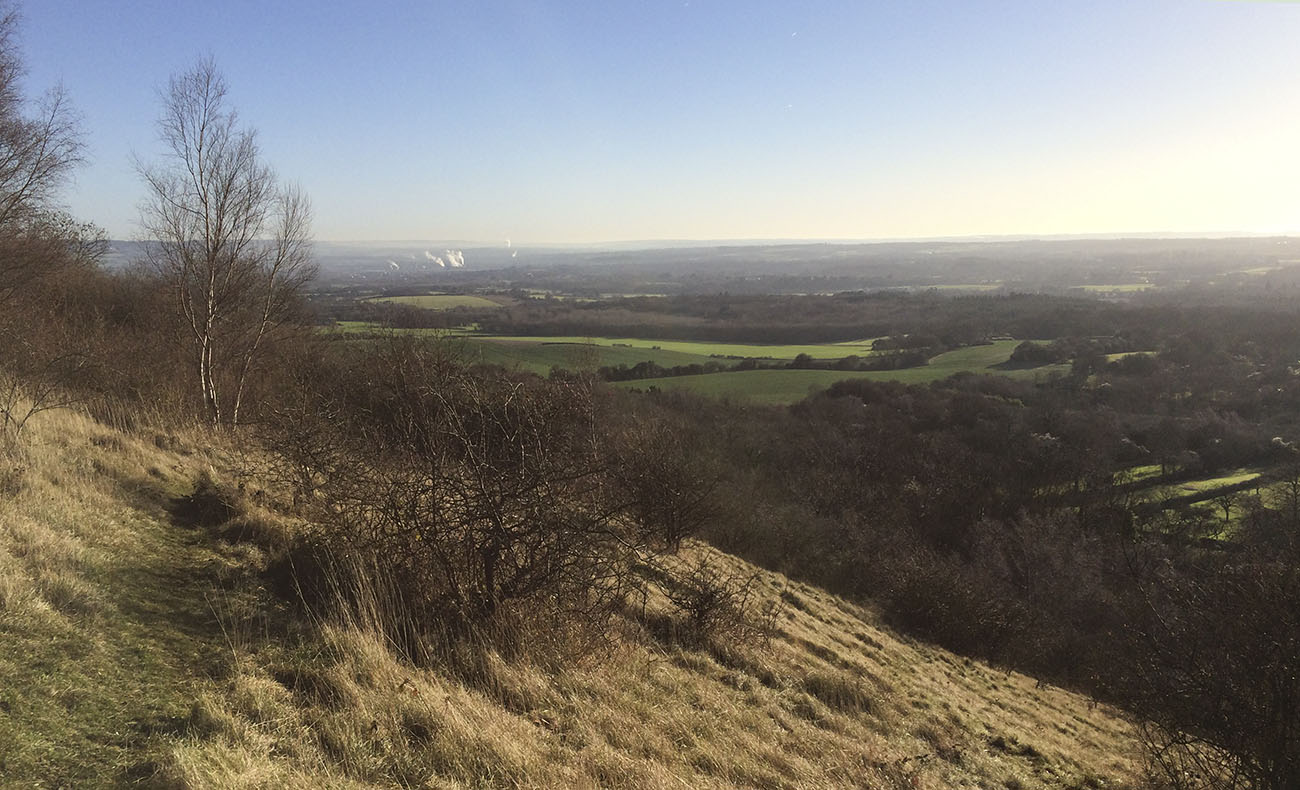 View over the Weald towards the Medway.  Downland Country Walk, Trosley Country Park, 29 December 2013.