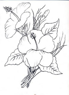 hibiscos para pintar