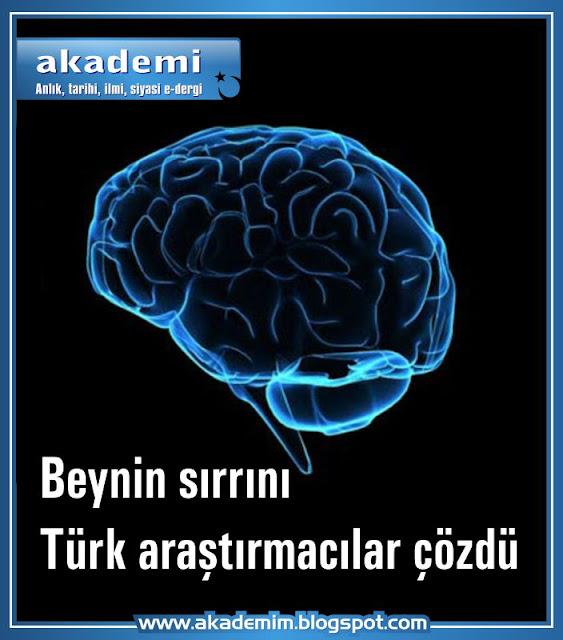 Beynin Sırrını Türk Araştırmacılar Çözdü