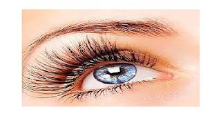 pasang bulu mata palsu secara instan