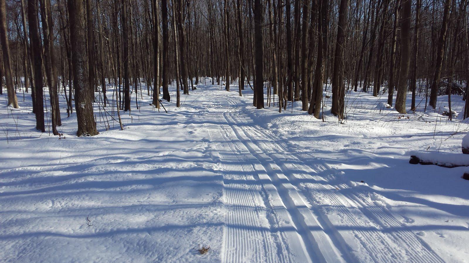 Sentiers de ski de fond