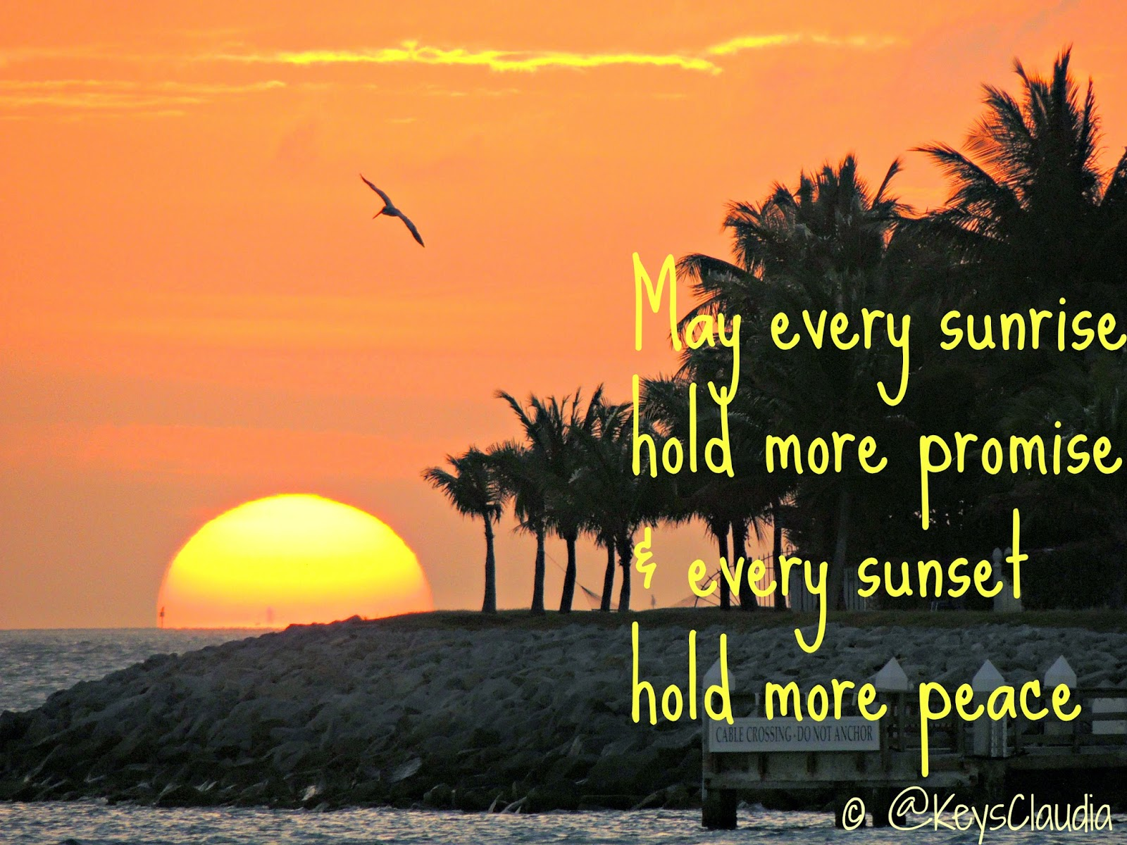 Quotes About Florida Travel In Paradise With Keys Claudia Saturday Sunset Inspiration .
