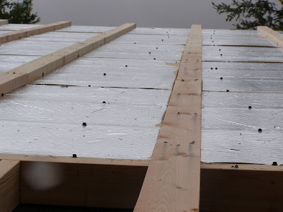 Insulated Roof Panel Retrofit - Palmer Cabin Framed
