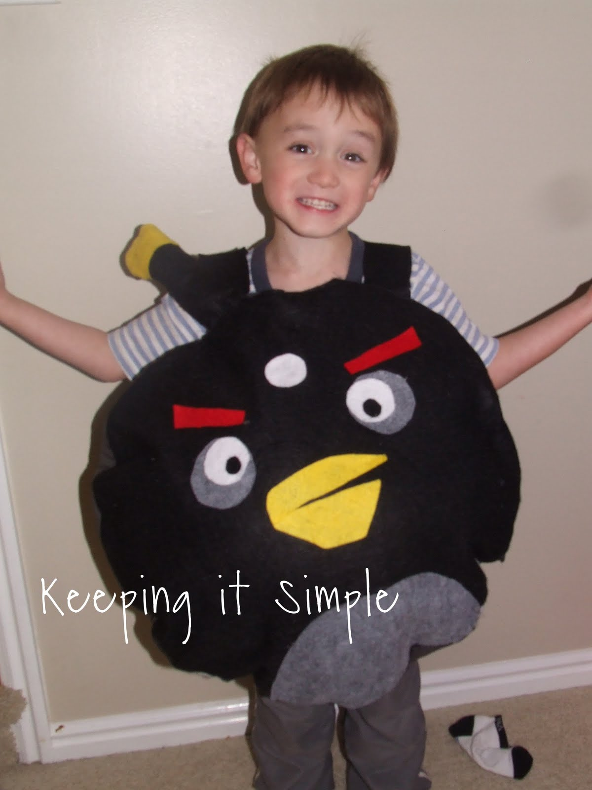 Keeping it Simple: Angry Birds costumes