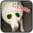 ---------------------------------------Quem usa Cookie Plushie!