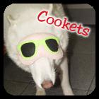 ---------------------------------------Quem usa Cookie Plushie!