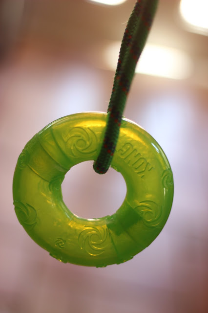 KONG Squeezz Ring with Handle