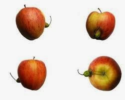 Detox and weight loss with an apple a day