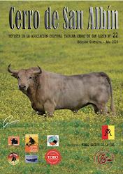 Revista Cerro de San Albín Nº 22, Año 2019