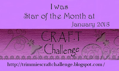 Star of the month CRAFT