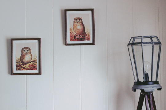 owl paintings and lantern