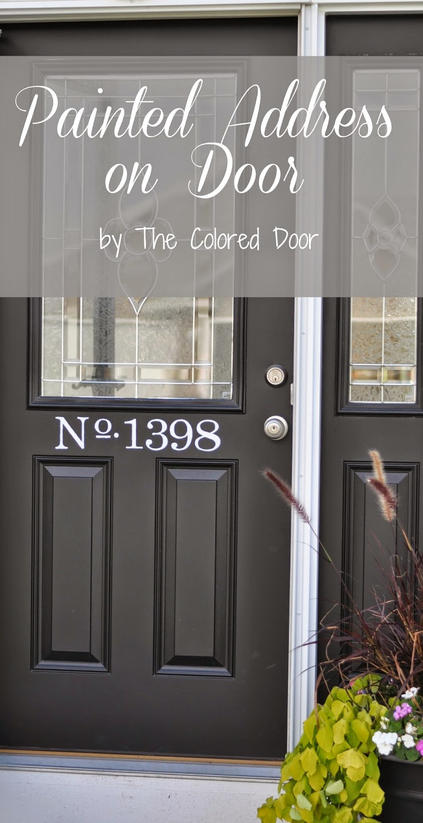 Painted Address \ The Colored Door