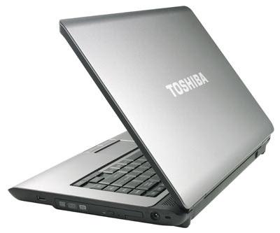 Toshiba Satellite L310-P4011