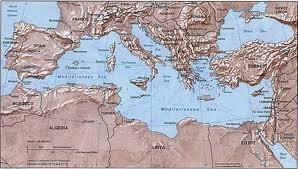 Mediterranean sea birds, aves del mar Mediterráneo