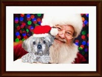 Picture of dog and Santa