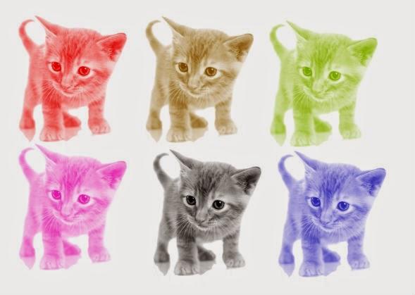Pintando gatinhos com o Pixlr