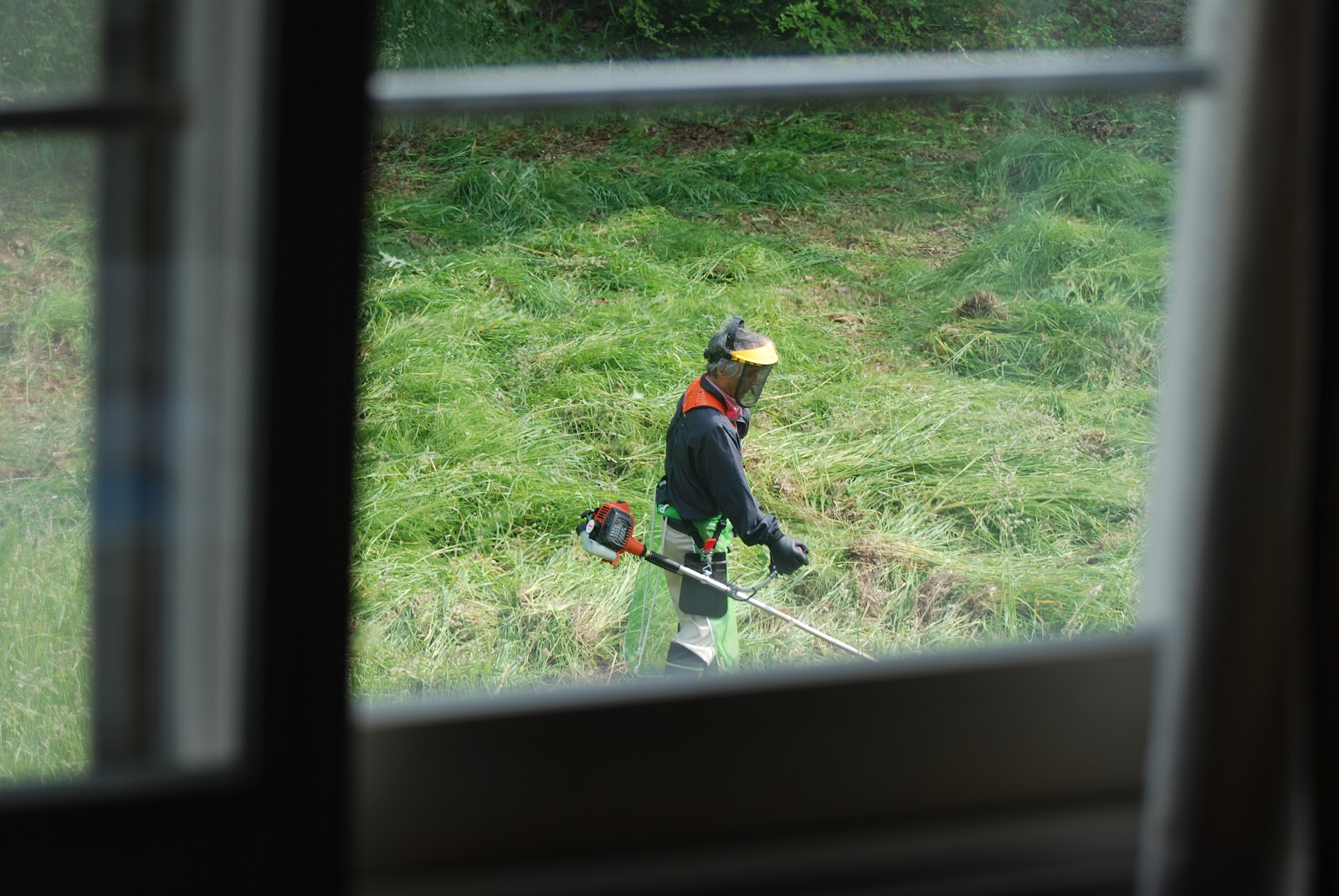 Kyle and Bre in Japan: Japanese lawn mowing
