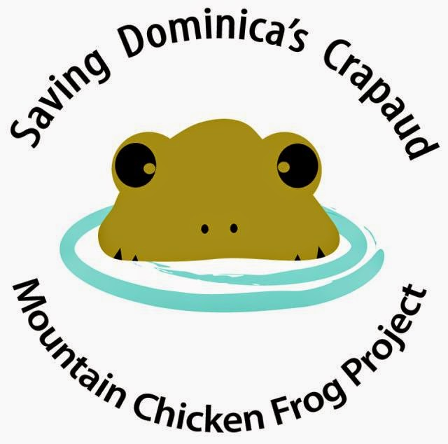 Mountain Chicken Dominica Mountain Chicken Frog Project