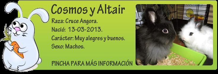 http://mirada-animal-toledo.blogspot.com.es/2013/05/normal-0-21-microsoftinternetexplorer4.html