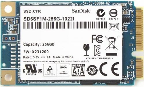 Sandisk 256GB X110 mSATA