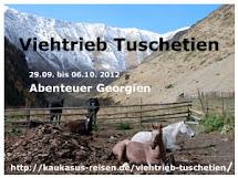 Viehtrieb Tuschetien