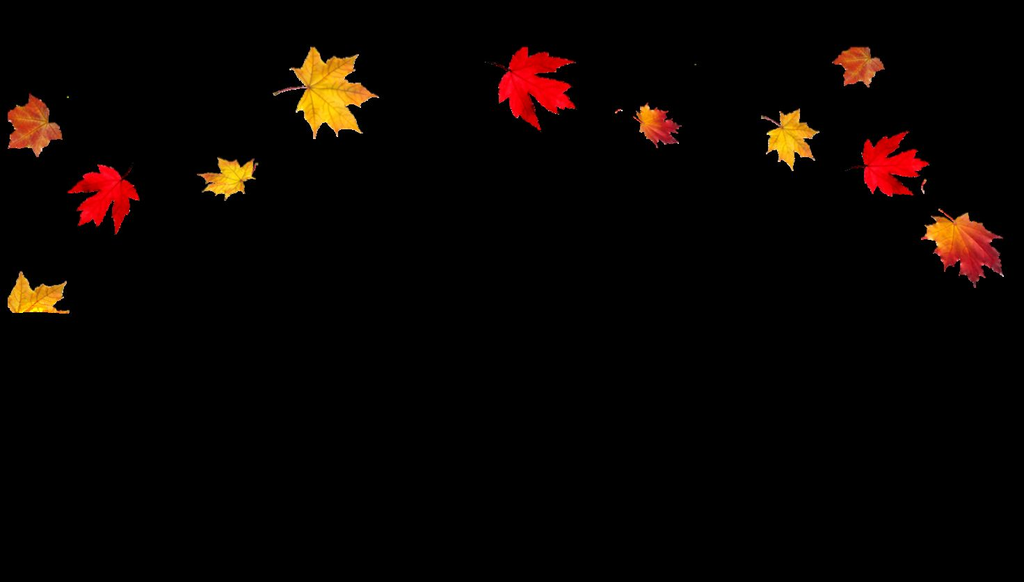 Transparent Fall Leaves Border PNG  PNG Mart