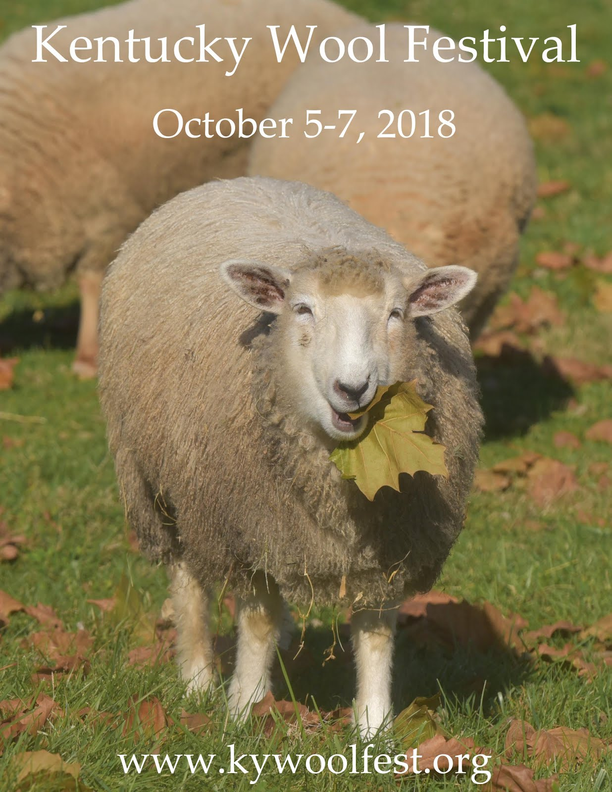 2018 Kentucky Wool Festival