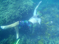 Taylor snorkelling