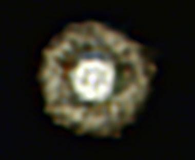 estrella con forma de huevo frito