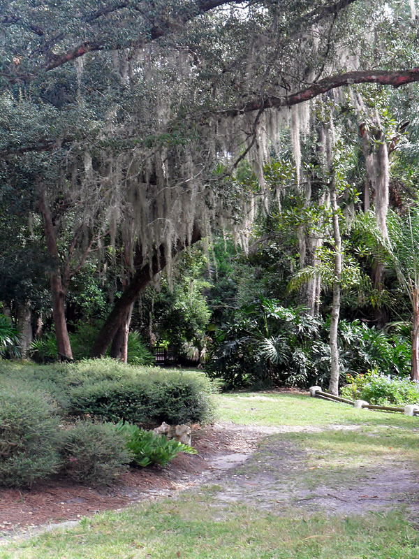 A Visit To Mead Botanical Gardens In Winter Park Exploring Orlando