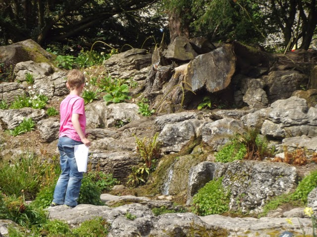 hunting for clues in Sizergh Castle rock garden
