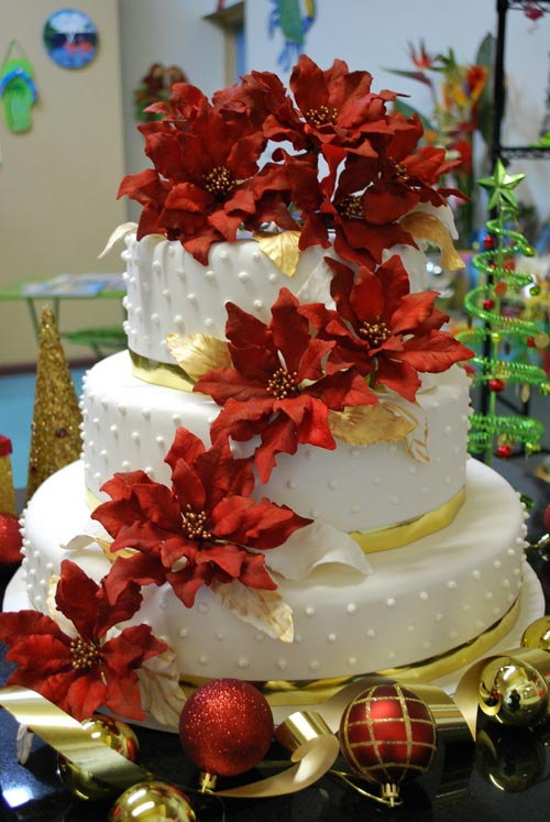 Beautiful baublesflowersleaves decoration Christmas cake ideas photo