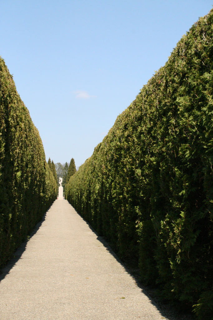 the other side of hedge Start studying the other side of the hedge learn vocabulary, terms, and more with flashcards, games, and other study tools.