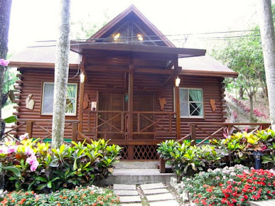Where to Stay in Xitou Nature Recreation Area, Nantou