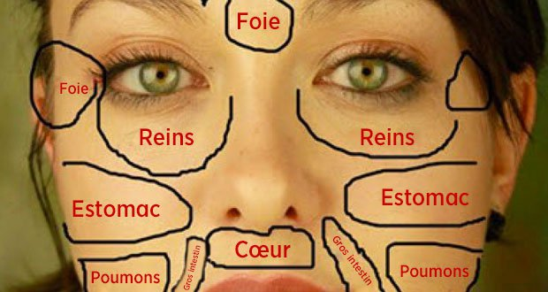 carte du visage chinoise quand les probl mes de peau r v lent l tat des organes vitaux du. Black Bedroom Furniture Sets. Home Design Ideas