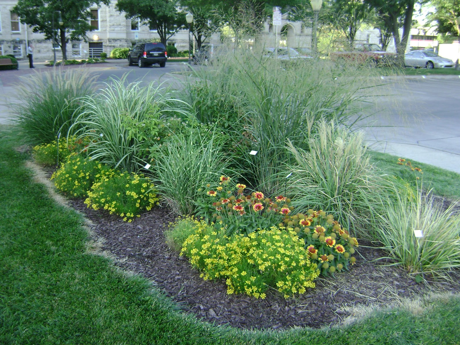 Riley county extension blog for Ornamental grass bed design